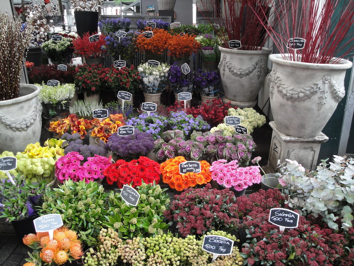 Array of flowers in the Amsterdam market