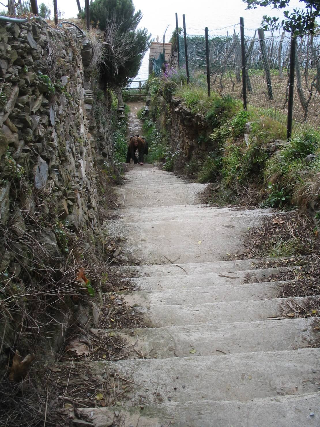 steps in the Cinque Terre, Italy