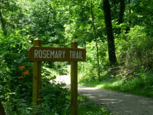 My Namesake Trail in Frick Park