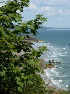 view of Moonstone, Pembrokeshire Coast Path, Wales