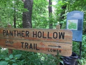 Schenley Park - Panther Hollow, Pittsburgh Trail