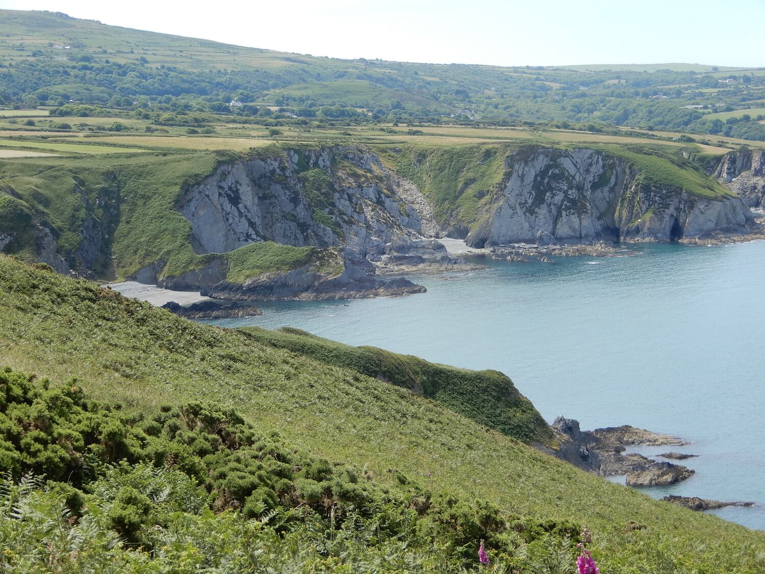 I follow my bliss in Dinas Head, Pembrokeshire