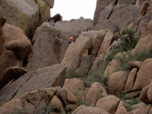 and the rock climber in pink, Arizona