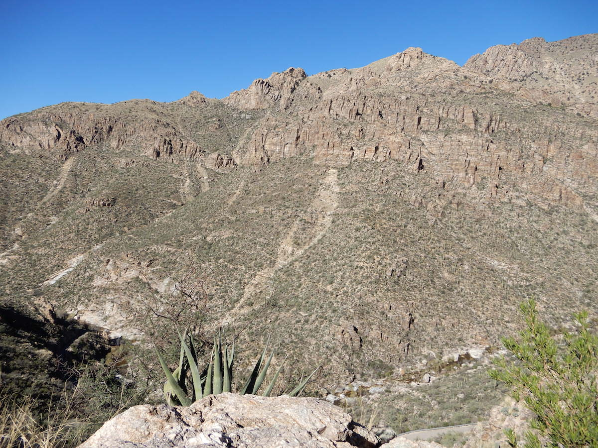 Rock avalanches caused these runs, Sabino Canyon, Arizona