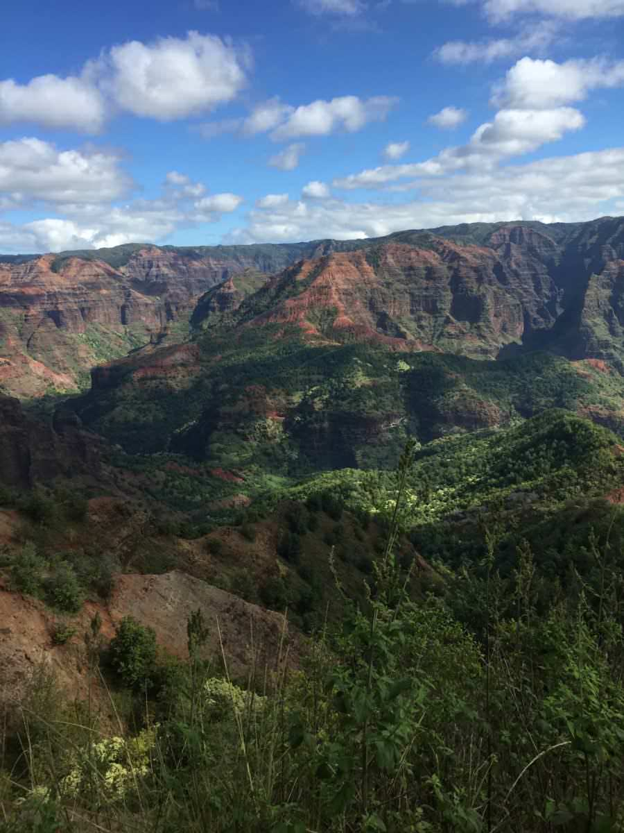 Waimea Canyon Vista of colors, Kauai